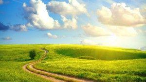 светлая дорога