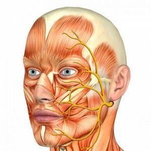 тройничный нерв