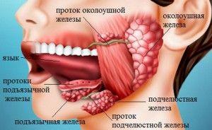воспаление подъязычной железы