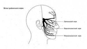тройничные нерв