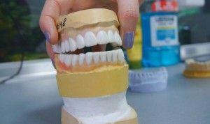 макет челюсти
