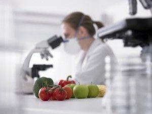 изучение овощей